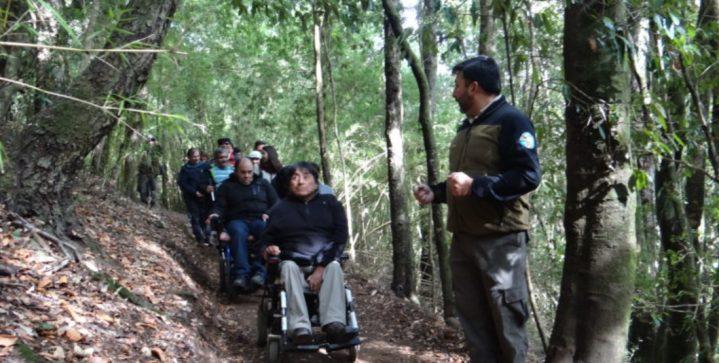 trilha inclusiva 719x363 - Inclusão no turismo: Chile inaugura primeira trilha inclusiva