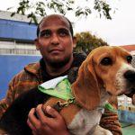apae mg 150x150 - Cães 'terapeutas' afastam depressão e melhoram rotina de pessoas com deficiência em MG