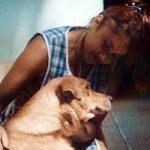 pedigree caes cegos 150x150 - PEDIGREE ensina pessoas a cuidarem de cães que ficaram cegos